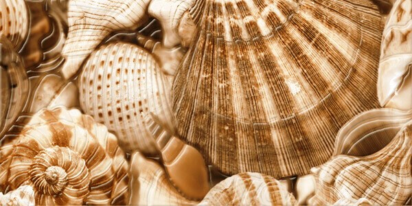 Декор Sea Breeze Shells (3) 300x600